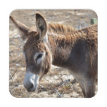 Adorable Donkey Beverage Coaster