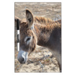 Adorable Donkey Dry Erase Board