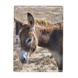 Adorable Donkey Dry-Erase Board
