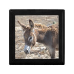 Adorable Donkey Gift Box