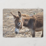 Adorable Donkey Invitation