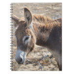 Adorable Donkey Notebook