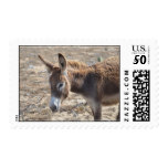 Adorable Donkey Postage