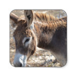 Adorable Donkey Square Sticker