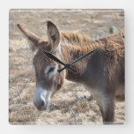 Adorable Donkey Square Wall Clock