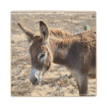 Adorable Donkey Wood Coaster