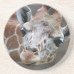 Adorable Giraffe Coaster