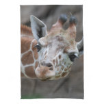 Adorable Giraffe Kitchen Towel