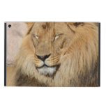 Adorable Lion Case For iPad Air