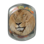 Adorable Lion Jelly Belly Candy Jars