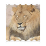 Adorable Lion Notepad