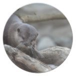 Adorable Otter Dinner Plate