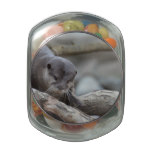 Adorable Otter Glass Jar