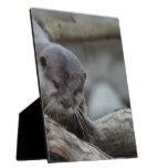Adorable Otter Plaque