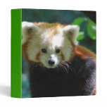 Adorable Red Panda Binder