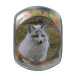 Adorable White Fox Glass Candy Jar