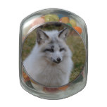 Adorable White Fox Jelly Belly Candy Jars