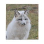 Adorable White Fox Notepad