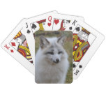 Adorable White Fox Playing Cards