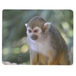 Amazing Squirrel Monkey Journal