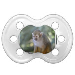 Amazing Squirrel Monkey Pacifier