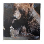 Bathing Bear Tile
