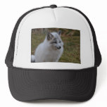 Beautiful White Swift Fox Trucker Hat