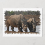 Black Rhino Invitation