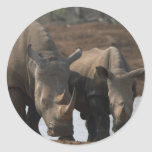 Black Rhinos Sticker