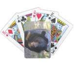 Black Spectacled Bear Bicycle Playing Cards
