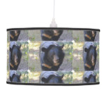 Black Spectacled Bear Ceiling Lamp