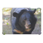 Black Spectacled Bear Cover For The iPad Mini