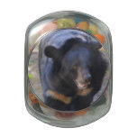 Black Spectacled Bear Glass Candy Jar