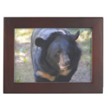 Black Spectacled Bear Keepsake Box