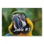 Blue and Gold Macaw Table Number