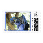 Blue Macaw Stamp