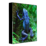 Blue Poison Arrow Frog 3 Ring Binder