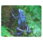 Blue Poison Arrow Frog Journal