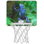 Blue Poison Arrow Frog Mini Basketball Hoop