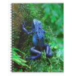 Blue Poison Arrow Frog Notebook