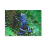 Blue Poison Arrow Frog Post-it Notes