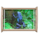 Blue Poison Arrow Frog Serving Tray