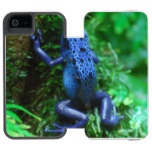 Blue Poison Arrow Frog Wallet Case For iPhone SE/5/5s