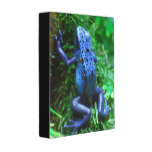 blue-frog-1.jpg mini binder