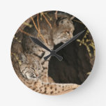 Bobcat Photo Clock
