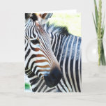 Bold Zebra Greeting Card