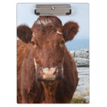 Brown Cow Clipboard