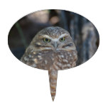 Burrowing Owl Cake Topper