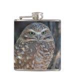 Burrowing Owl Hip Flask