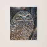 Burrowing Owl Jigsaw Puzzle